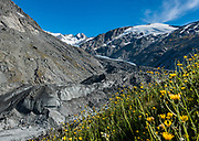 Reid Glacier on Plunket Dome (2191m) is seen from the tongue of Dart Glacier, during a 20 kilometer side trip from Dart Hut to spectacular Cascade Saddle, Rees-Dart Track, in Mount Aspiring National Park, Otago region, South Island of New Zealand.