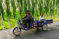 Farmers on the road leaving the Sunday Livestock market just outside Kashgar (China's westernmost city), Xinjiang Province, China. Kashgar is along the Silk Road, near Tajikistan and Pakistan.