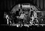 The Specials (l-r)  Roddy Byers, Neville Staple, Horace Panter, Terry Hall, John Bradbury, Lynval Golding , Jerry Dammers Hammersmith Palais, 21 August 1979