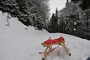 Sledge in snow in a forest photographed near Tegernsee, Germany