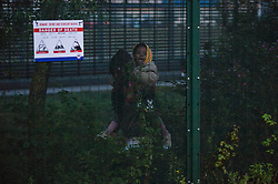 © London News Pictures. Calais, France. A woman carrying her three year old daughter inside the perimeter fence at Eurotunnel, as immigrants attempt to reach the UK. The situation has reached crisis point, which French police over run by attempts to cross the border. Photo credit: Ben Cawthra /LNP