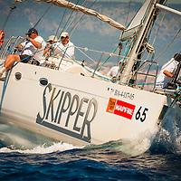 The Best Skipper