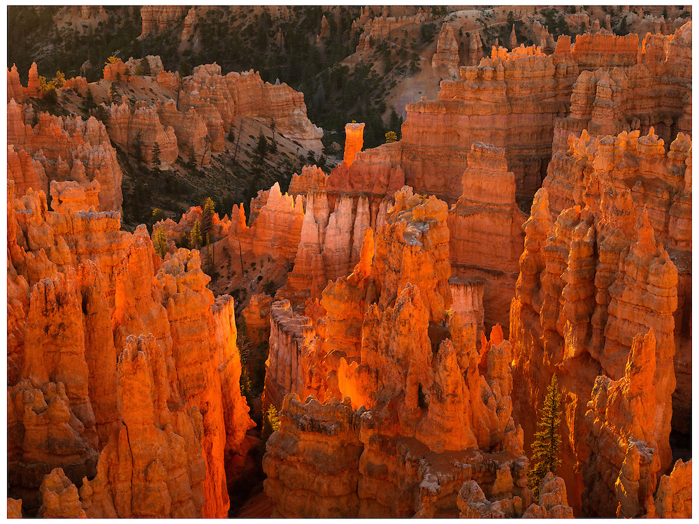 Bryce Canyon National Park, UT 10/31/2015<br /> Amphitheatre, Bryce Canyon <br /> Alex Jones / www.alexjonesphoto.com
