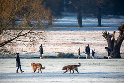 © Licensed to London News Pictures. 18/01/2020. London, UK. Dog walkers and families enjoy a wonderful frosty and misty morning in Richmond Park, London as forecasters predict a cold week ahead. Richmond Park issued a warning for ice after the previous days high rain fall which could lead to increased slippery conditions for walkers and road users. Photo credit: Alex Lentati/LNP