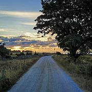 Vägen ner mot Vändburg gamla fiskeläge i soluppgång.<br /> PHOTO © Bernt Lindgren
