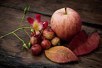 The autumn harvest in the Gascony region of France is reflected in this still-life photograph