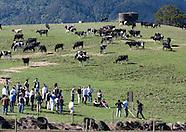 HANERAU FARMS - Field Day