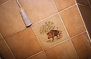 HUNTING WILD BOAR, France. Ardeche.  Toilet with wild boar  motif. Wild boar & deer hunting with hounds. A pursuit which is loved by some and hated by others. The hunters say hunting is natural, their opposers say it is bloodthirsty. There are millions of guns and it is a popular bloodsport.