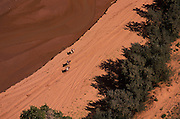 Image of horseback riders at Canyon de Chelly National Monument, Arizona by Randy Wells