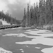 Frozen Pond - Continental Divide Summit - Yellowstone National Park - Black & White