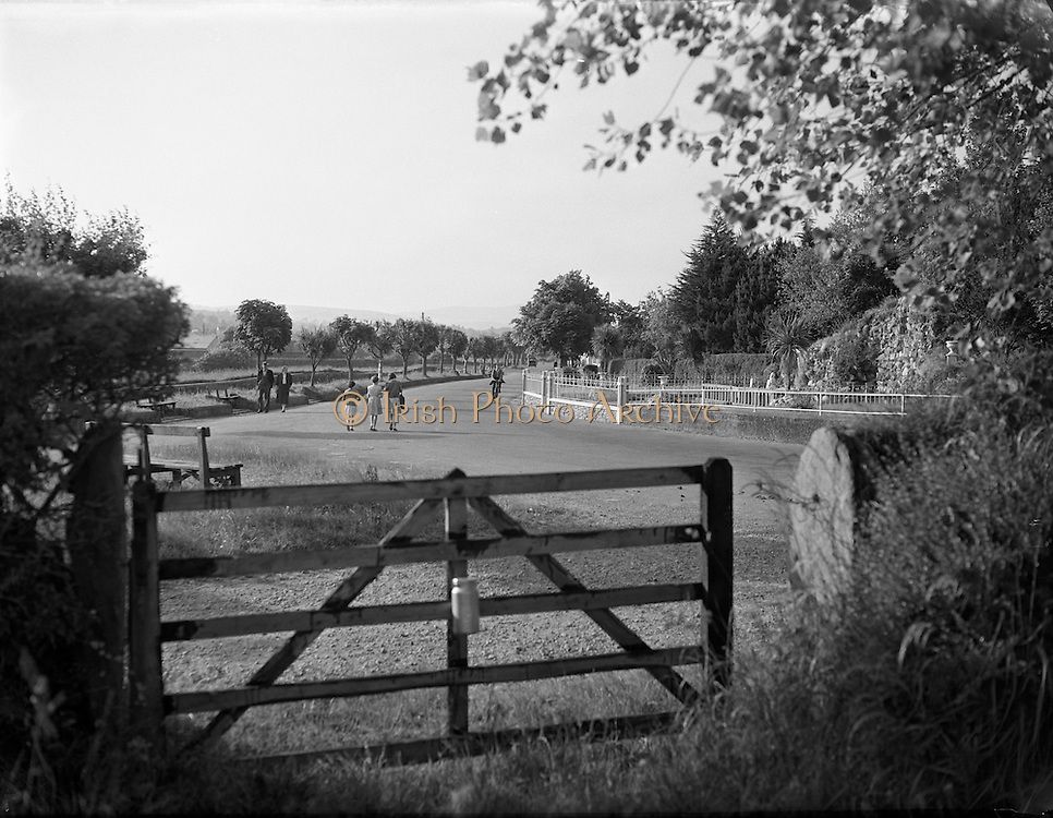 Views, Gorey, Wexford.17/06/1957<br />