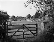 Views, Gorey, Wexford.17/06/1957<br /> From old Mr O'Neill's Orchard