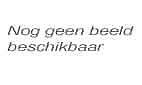 Huldiging voetballer koninging Julianastraat Huizen