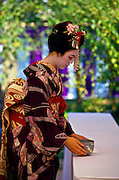 Maiko (Apprentice Geishas) preparing for Nishijin Yume-matsuri (festival), Kitano-Tenmangu Shrine, Kyoto, Japan