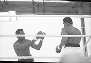 Ali vs Lewis Fight, Croke Park,Dublin.<br /> 1972.<br /> 19.07.1972.<br /> 07.19.1972.<br /> 19th July 1972.<br /> As part of his built up for a World Championship attempt against the current champion, 'Smokin' Joe Frazier,Muhammad Ali fought Al 'Blue' Lewis at Croke Park,Dublin,Ireland. Muhammad Ali won the fight with a TKO when the fight was stopped in the eleventh round.<br /> <br /> Image of Lewis as he prepares to parry a right from Ali.
