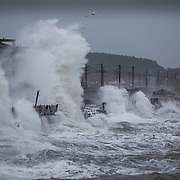 Storm Gertrude. Ayrshire Coast.  The waves batter the coastline at Saltcoats. Picture Robert Perry 29th Jan 2016<br /> <br /> Must credit photo to Robert Perry<br /> FEE PAYABLE FOR REPRO USE<br /> FEE PAYABLE FOR ALL INTERNET USE<br /> www.robertperry.co.uk<br /> NB -This image is not to be distributed without the prior consent of the copyright holder.<br /> in using this image you agree to abide by terms and conditions as stated in this caption.<br /> All monies payable to Robert Perry<br /> <br /> (PLEASE DO NOT REMOVE THIS CAPTION)<br /> This image is intended for Editorial use (e.g. news). Any commercial or promotional use requires additional clearance. <br /> Copyright 2014 All rights protected.<br /> first use only<br /> contact details<br /> Robert Perry     <br /> 07702 631 477<br /> robertperryphotos@gmail.com<br /> no internet usage without prior consent.         <br /> Robert Perry reserves the right to pursue unauthorised use of this image . If you violate my intellectual property you may be liable for  damages, loss of income, and profits you derive from the use of this image.