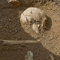 A 2700+ year-old skull lies in a khirigsur burial mound at an archaeological site near Muren, Mongolia.g