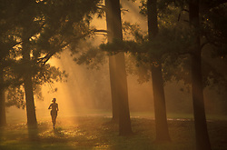 Stock photo of a woman running in Memorial Park early in the morning