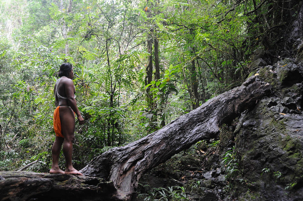 Embera indian in Panama<br /> <br /> II AWARD IN PHOTO CONTEST FOREST FINANCE, PANAMA 2011<br /> <br /> II PREMIO EN CONCURSO DE FOTOGRAFÍA FOREST FINANCE, PANAMÁ 2011