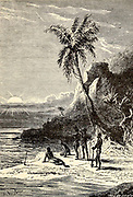 The Island of Vanikoro From the Book Twenty thousand leagues under the seas, or, The marvelous and exciting adventures of Pierre Aronnax, Conseil his servant, and Ned Land, a Canadian harpooner by Verne, Jules, 1828-1905 Published in Boston by J.R. Osgood in 1875