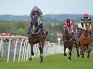 Beverley Racing 110816
