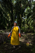Jumatiah Binti Darmansyah - a smallholder palm oil farmer - stands in her protective clothing on her plot next to her home in Toniting, Beluran District, Sabah, Malaysia, on 8 September 2016. Jumatiah has been farming her small plot 1.75Ha since the 1990s. She has been able to increase her yields since becoming part of the Wild Asia Group scheme, which works with the Roundtable on Sustainable Palm Oil to support Malaysian smallholders to become certified sustainable. This includes improving farm management, reducing their use of pesticides and fertilizers, and increasing yields. Smallholders account for 40% of global palm oil production, and as such play an important role in increasing sustainability within the industry.