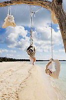 dead tree with shells on the beautiful white sand beach of cozumel island in yucatan mexico