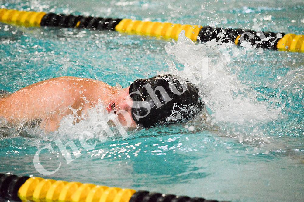 Roy High Swim Action Shots