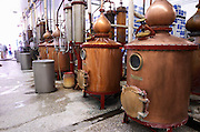 Still for distilling Ouzo. Tsantali Vineyards & Winery, Halkidiki, Macedonia, Greece.
