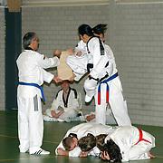 Karate Sportdemonstratie bij de opening van de Klaas Bout hal Laren