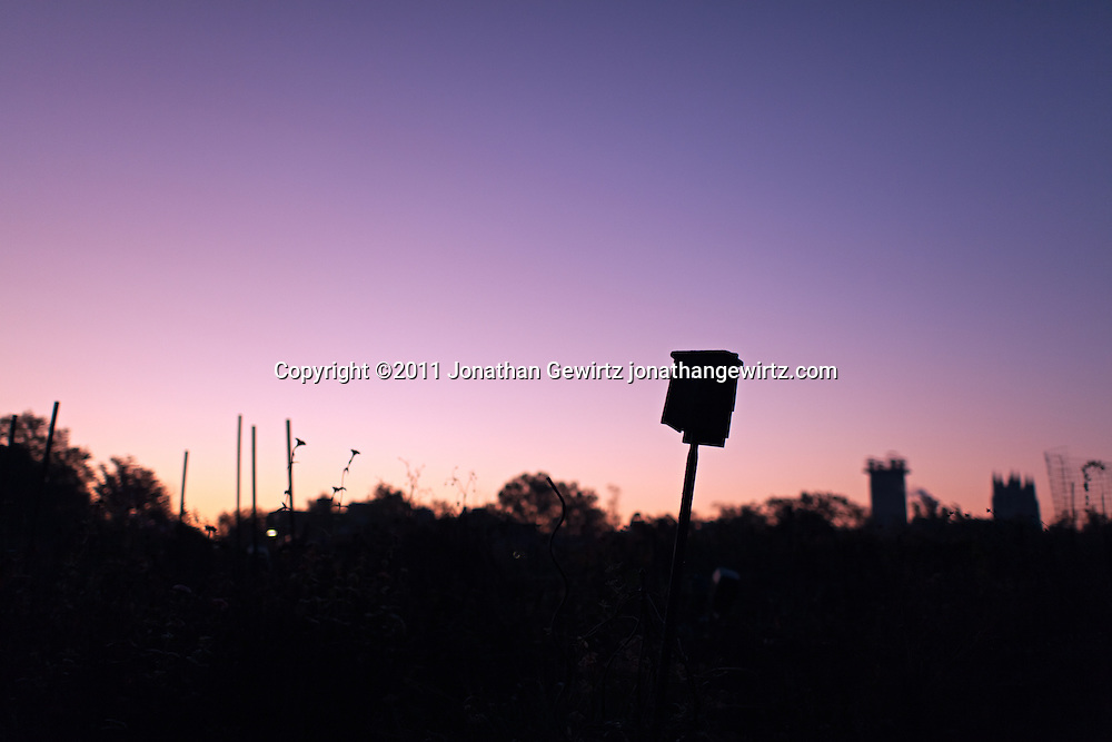A birdhouse in a community garden at sunrise. The towers of the Washington Cathedral are visible in the background. WATERMARKS WILL NOT APPEAR ON PRINTS OR LICENSED IMAGES.