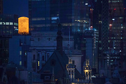 © Licensed to London News Pictures. 27/02/2021. London, UK. The full 'Snow moon', also known as the 'Hunger moon', rises above central London's skyline. Photo credit: Marcin Nowak/LNP