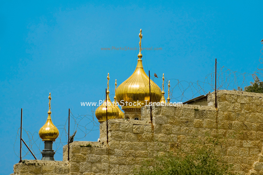 Israel, Jerusalem, The Russian Orthodox Church of Saint Mary Magdalene is situated along the pathway between Dominus Flevit and the Garden of Gethsemane. Mt Olives, as seen from the Jewish cemetery on mount Olives.
