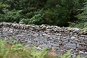 Traditional dry stone wall in Powys, Wales, UK. Dry stone is a building method by which structures are constructed from stones without any mortar to bind them together. Dry stone structures are stable because of their unique construction method, which is characterized by the presence of a load-bearing façade of carefully selected interlocking stones. Dry stone technology is best known in the context of wall construction, but dry stone artwork, buildings, bridges, and other structures also exist.