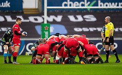 Richard Wigglesworth of Saracens waits to put in to the scrum<br /> <br /> Photographer Simon King/Replay Images<br /> <br /> European Rugby Champions Cup Round 5 - Ospreys v Saracens - Saturday 11th January 2020 - Liberty Stadium - Swansea<br /> <br /> World Copyright © Replay Images . All rights reserved. info@replayimages.co.uk - http://replayimages.co.uk