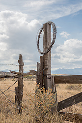 barbed wire on a fence in New Mexico