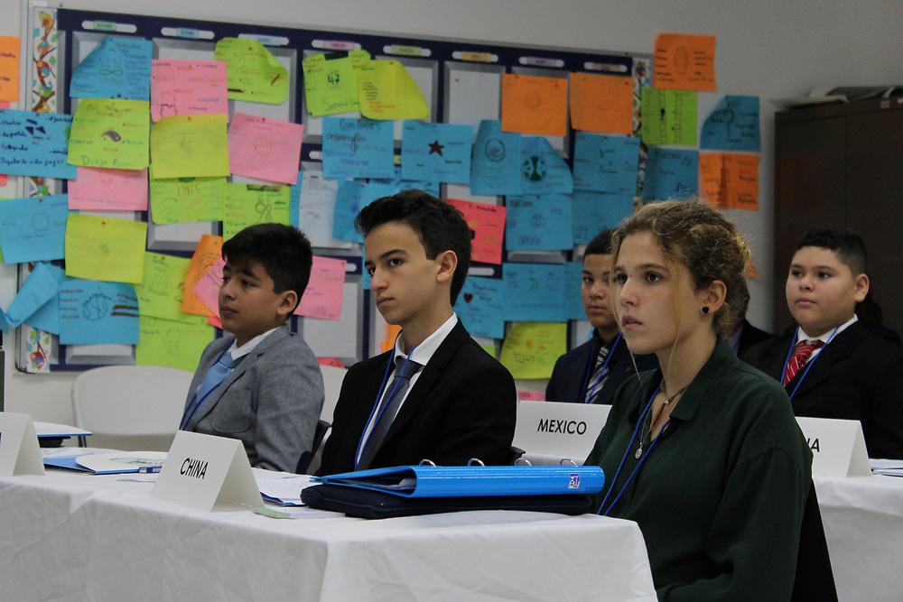 ECOSOC committee