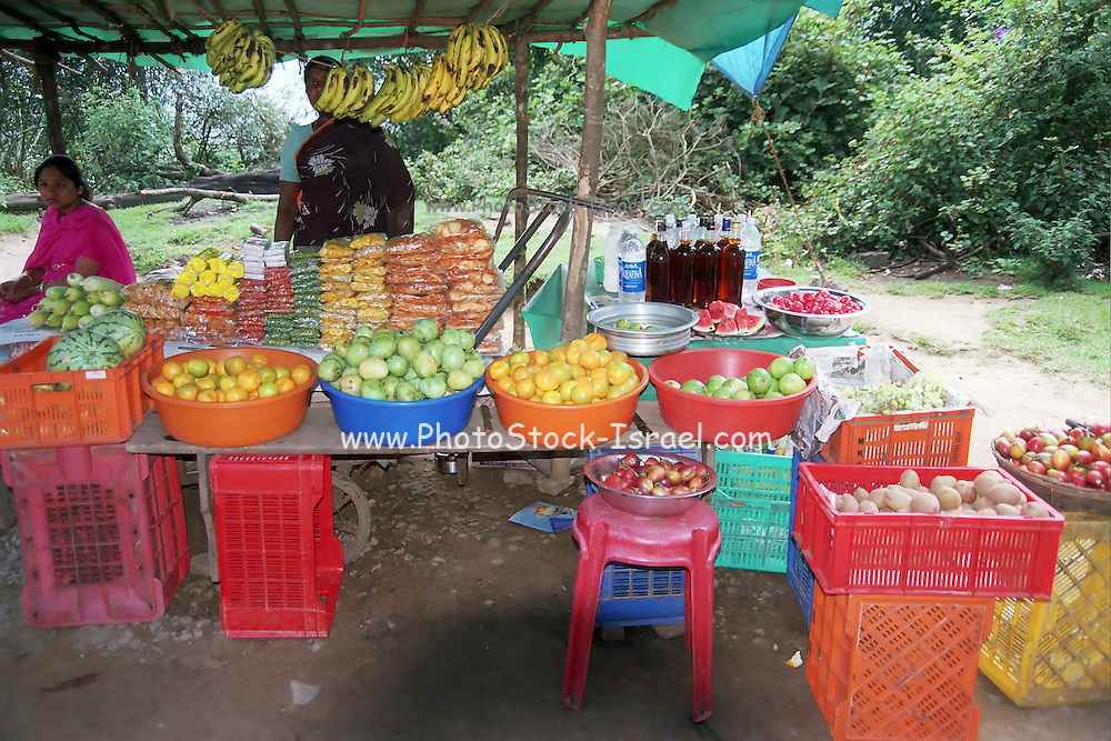 2 women at a Fruit stall, India, Kerala, a state on the tropical coast of south west India
