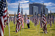 10 SEPTEMBER 2012 - TEMPE, AZ:     A woman walks through the American flags in  the Healing Field in Tempe, AZ, Monday. The Exchange Club of Tempe and the city of Tempe are hosting the 9th Annual Healing Field display. The annual event posts three thousand American flags in the Tempe Beach Park. The flags are 3?X5?  and stand 8? tall. The display is a tribute to those who died in the terrorist attacks of September 11, 2001.  Nearly 3,000 people were killed when terrorists affiliated Al-Qaeda crashed commercial airliners into the World Trade Center in New York, the Pentagon in Arlington, VA, and a field in Ohio.   PHOTO BY JACK KURTZ