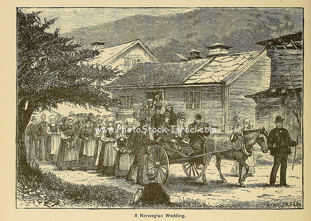 Norwegian Wedding From the book ' The viking Bodleys; an excursion into Norway and Denmark ' by Horace Elisha Scudder Published in Boston, by Houghton, Mifflin and Company in 1885 from the BODLEY FAMILY series of books