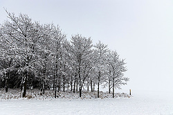 04 January 2021: Winter scenes captured after the 2021 New Years Day ice storm and subsequent snow on Central Illinois<br /> <br /> Bloomington - Normal Water Reclamation Dist. Shirley Blacktop