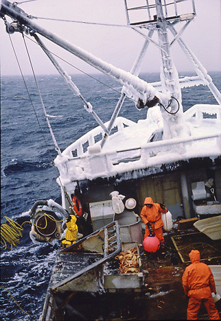 Alaska. Pacific Wind crabbing vessel. Crabbers hook up a cable to the totes containing Opilio Crab.