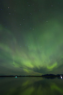 Northern Lights as seen just at the entrance to Glacier Bay National Park,  Inside Passage, Alaska, USA