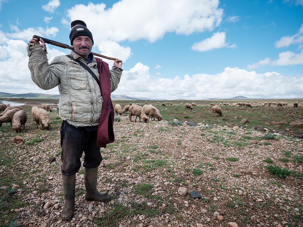 MERZOUGA, MOROCCO - CIRCA MAY 2018: Shepherd in the countryside of Morocco