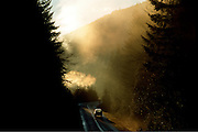 Sun rays coming through trees and forest with car on road