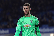 Manchester United Goalkeeper David De Gea looks on. Premier league match, Everton v Manchester United at Goodison Park in Liverpool, Merseyside on Sunday 4th December 2016.<br /> pic by Chris Stading, Andrew Orchard sports photography.
