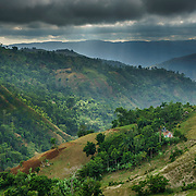 Haiti Reforestation