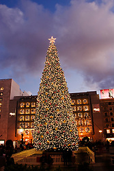 California, San Francisco: The large Christmas tree at Union Square..Photo #: 32-casanf75807.Photo © Lee Foster 2008