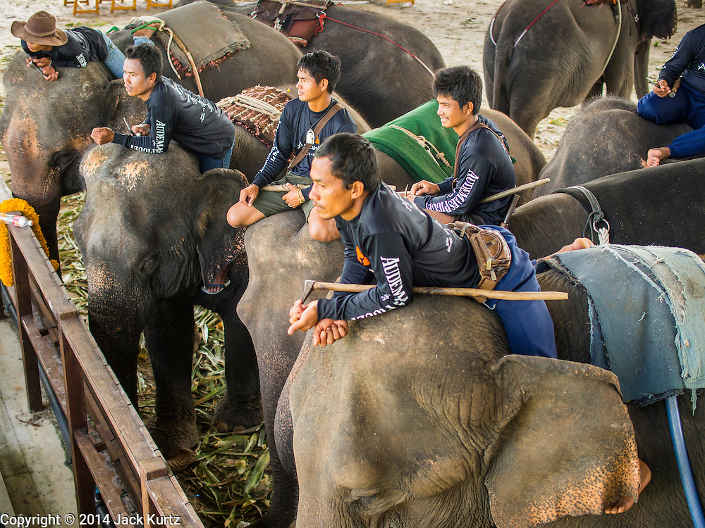 """28 AUGUST 2014 - BANGKOK, THAILAND:  Mahouts on their elephants watch the action at the King's Cup Elephant Polo Tournament at VR Sports Club in Samut Prakan on the outskirts of Bangkok, Thailand. The tournament's primary sponsor in Anantara Resorts. This is the 13th year for the King's Cup Elephant Polo Tournament. The sport of elephant polo started in Nepal in 1982. Proceeds from the King's Cup tournament goes to help rehabilitate elephants rescued from abuse. Each team has three players and three elephants. Matches take place on a pitch (field) 80 meters by 48 meters using standard polo balls. The game is divided into two 7 minute """"chukkas"""" or halves.     PHOTO BY JACK KURTZ"""