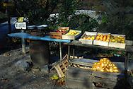 Pommes et oignons doux, en vente au bord des routes à l'Automne.